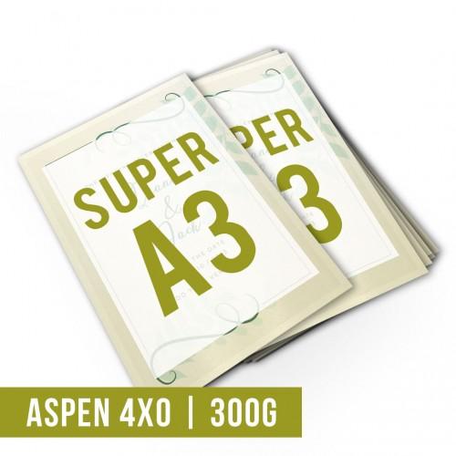 Impressão Digital Aspen 300g SA3 | 4x0 | 300g